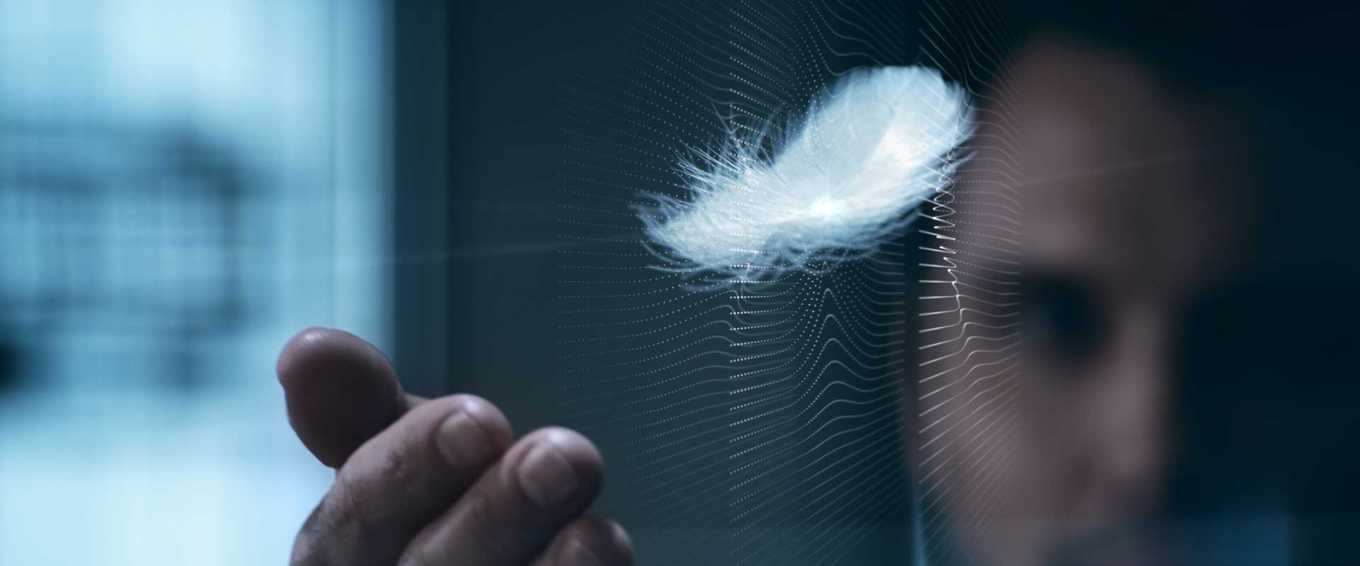 Feather. Still from Lexus Commercial.